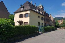 Apartment in Kaysersberg - TA - COTE VIGNOBLE